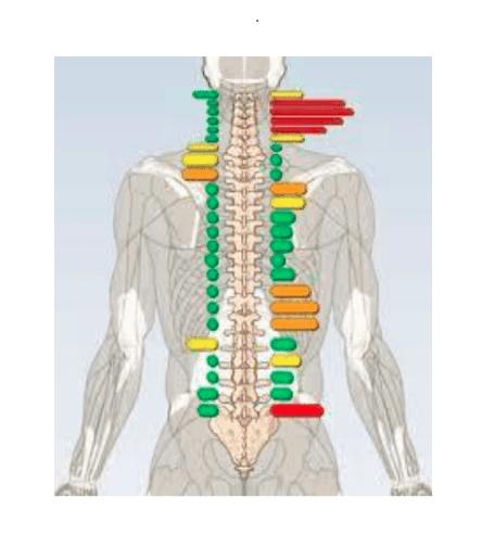 kiropraktika vizsgálatok